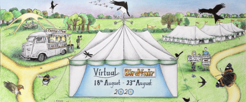Concept sketch of the august 2020 birdfair